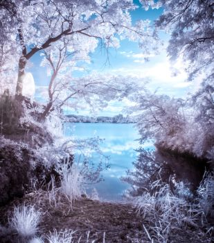 IR - Saturday morning at the lake by DanielGliese