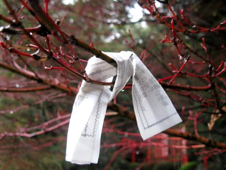 Wet Omikuji by Lissou-photography