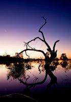 Venus and the Moon at Menindee by cazzaritch