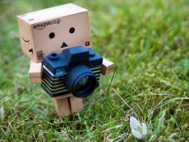 Danbo's New Hobby by Bootcoot