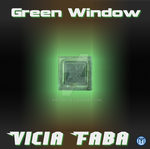 Green Window by mbi755c