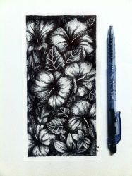 Hibiscus Flowers by amiablez