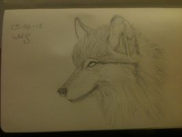 20130725 Wolf by SketchDailyChallenge