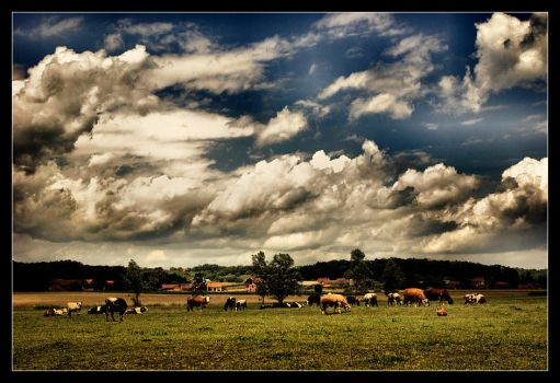 Cows Of The Apocalypse by AstralWind