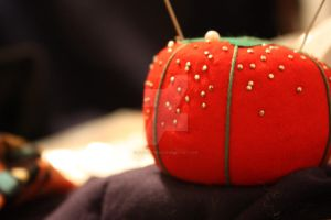 Pin Cushion by alittletree