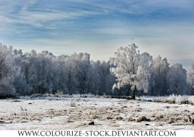 Landscape Stock 98 by Colourize-Stock