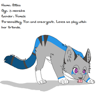 My new fursona Aillea by Whisper1820