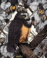 Spectacled Owl by AngelaRizza