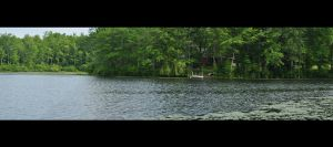 A Watery Panorama by mega-mania