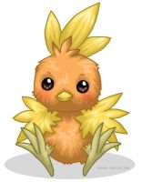 Pokemon :: Torchic