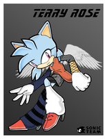 Terry Rose :Sonic Style: by TerryRose
