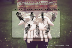 Tribal feathers brushes - Plumas tribales by iLove-Arts