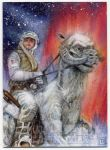 Star Wars Galactic Files sketch card by DavidRabbitte