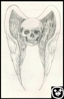 skull and wings by heely