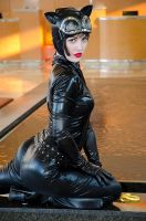 Catwoman at Con by nikongriffin