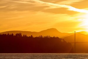 Vancouver Gold by nigel3