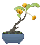 tiny plant : by bonsighh
