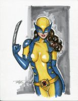 All New Wolverine by Artfulcurves