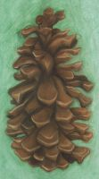 Pine Cone by Xeroxed-Animus