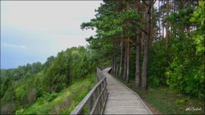 Lithuania nature.......51 by gintautegitte69