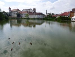 Pond and chateau by Terra17