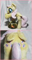 Fluttershy - More Pics! by SailorMiniMuffin