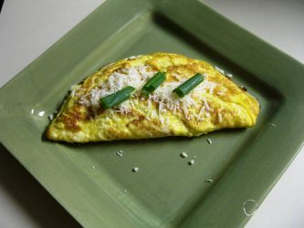 Cheese n Green Onion Omellette by DavisJes
