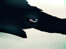 .:Through Her Eyes:. - Quick WarmUp Doodle by MerciResolution