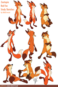 Zootopia Red Fox Study Sketches by RobCivecat