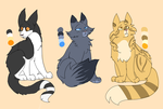 Warriors designs 1 by jayfeather009