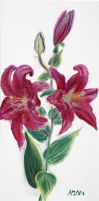 Oriental Lily by Starsong-Studio