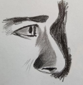 Quick sketch head side on by dorofo