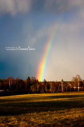 Follow the rainbow to find the gold! by Miralecia