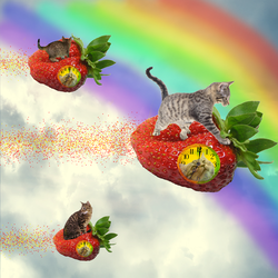 The Flying Strawberry Cats by IceXDragon