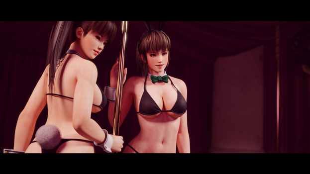 Hitomi and Leifang Bunnygirls 3 by Chrissy-Tee