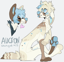 AUCTION (open) by hex000000