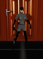 Catwoman Animated by dragonzero1980