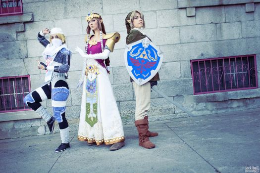Heroes of Hyrule Assemble! by ryoky28