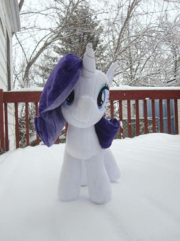 Rariplush in snow by Envirotech