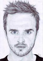 Aaron Paul as Jesse Pinkman in Breaking Bad by MKoji