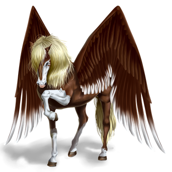 Pegasus by Copperlight