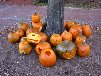Pumpkins by craftywench-nh