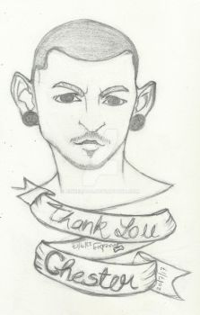 Thank You Chester Experiment by jinxeddog