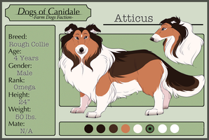 DoC || Atticus (retired) by Pinky-Poodle