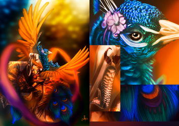 The Peacock Dance by Swagtail