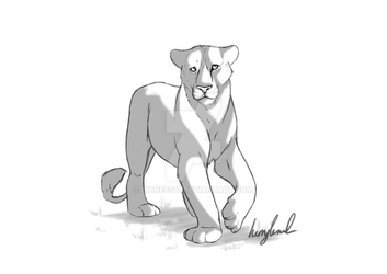 Lioness Doodle by lioness17