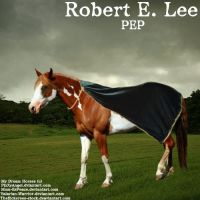 Robert E. Lee by Carillie