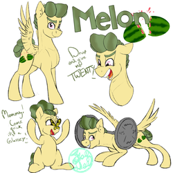 Meet Melon by FaeDeeDraws