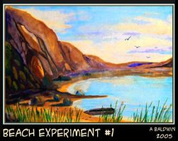 beach experiment by abaldwin