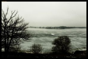 Fog and Ice by sirlatrom